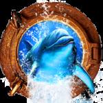 Золотой дельфин 2020