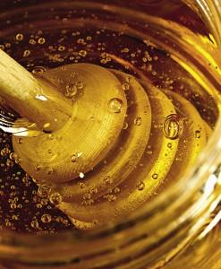 Специалисты доказали что здешний мед многократно полезнее собранного в других регионах.