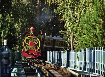 Детская железная дорога длиной более 5 км поль зуется популярно стью у туристов.