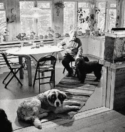 На даче Сергея Образцова во Внукове жили не только со-баки, но и крокодилы, 1963