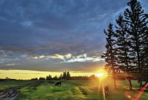 Летом в Якутии ночи короткие и светлые. Солнце встает над горизонтом лесотундры очень медленно, успевая показать на небе все краски радуги.