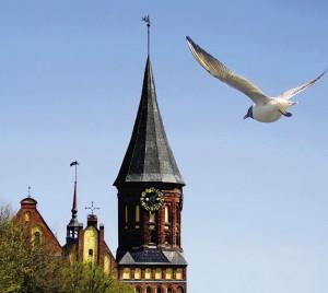 Пролетающие над шпилями чайки говорят о близости Балтийского моря.