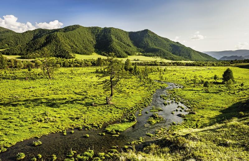 Алтай часто сравнивают с Тибетом. Согласно легендам, где-то здесь есть вход в мистическую страну Шамбалу.