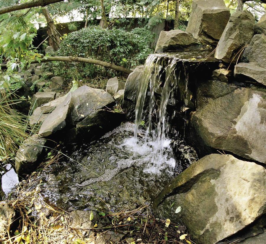 В водном саду есь маленький водопад.