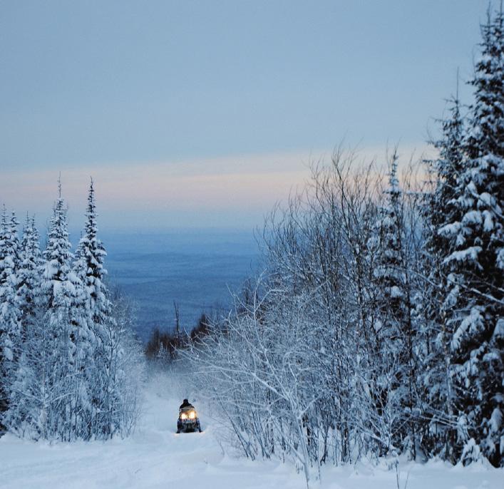 Снегоходная трасса «Север» проходит через легендарный перевал Дятлова. Тайна гибели группы лыжников не дает покоя пытливым исследователям вот уже более полувека. Холодное безмолвие нетронутого хвойного леса нарушал лишь рев наших машин...