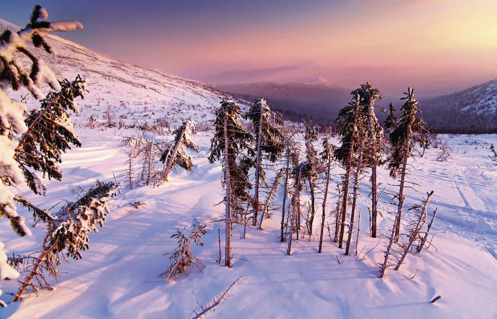 Организация «Дуниты Среднего Урала» собирается сделать карьер на склонах Конжаковского массива, чтобы добывать ценную породу открытым способом.