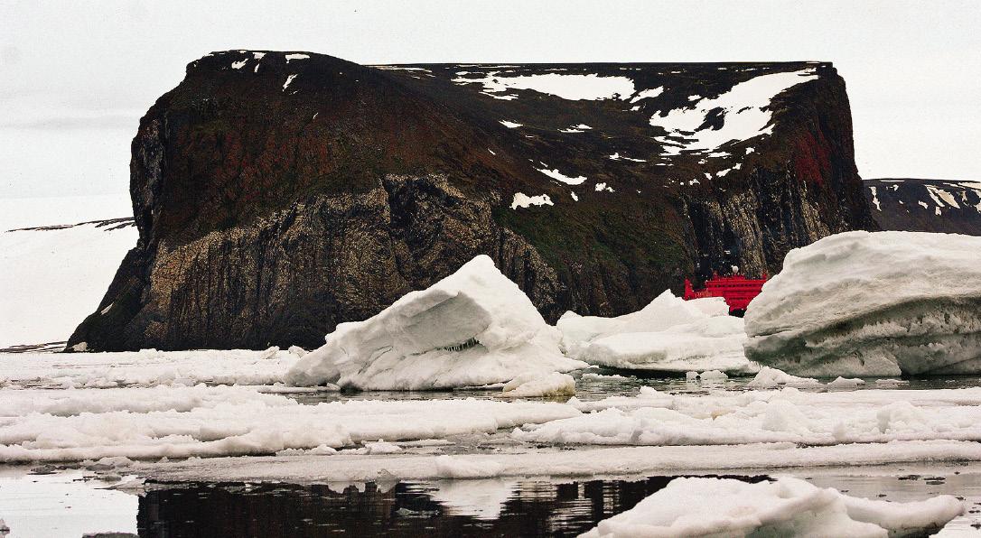 Arctic_opt