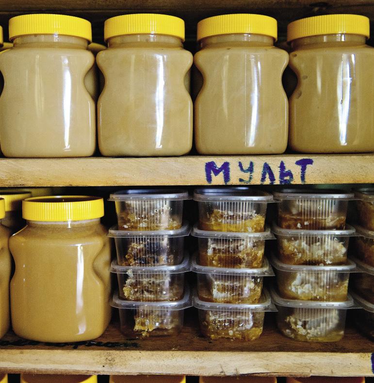 Все сорта меда отличаются по цвету и консистенции. Каждый из гостей может попробовать и выбрать мед по своему вкусу.