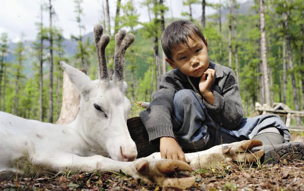 Нивхи – еще один из малых народов России. Олени для нивхов – домашний скот и часть культуры. Восточная Сибирь