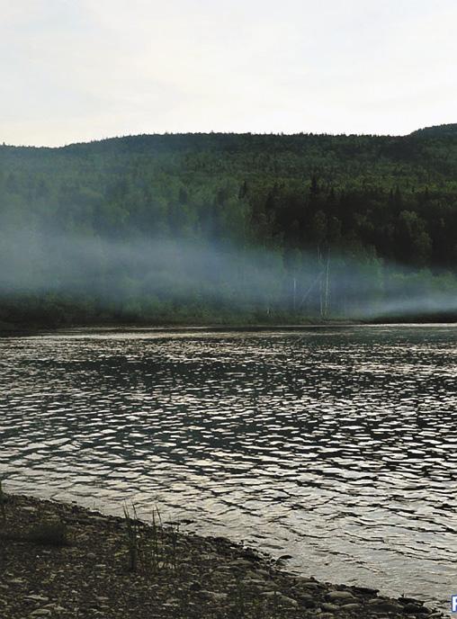 Туман на реке Колве завораживает... Пермский край