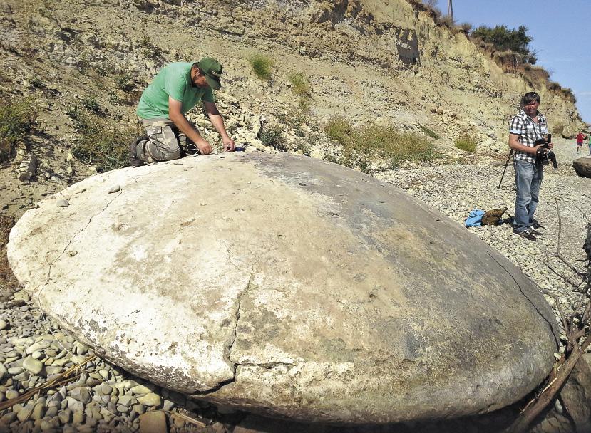 Загадочные каменные диски найдены летом 2015-го на Медведицкой гряде.Скорее всего они изготовлены древними людьми.