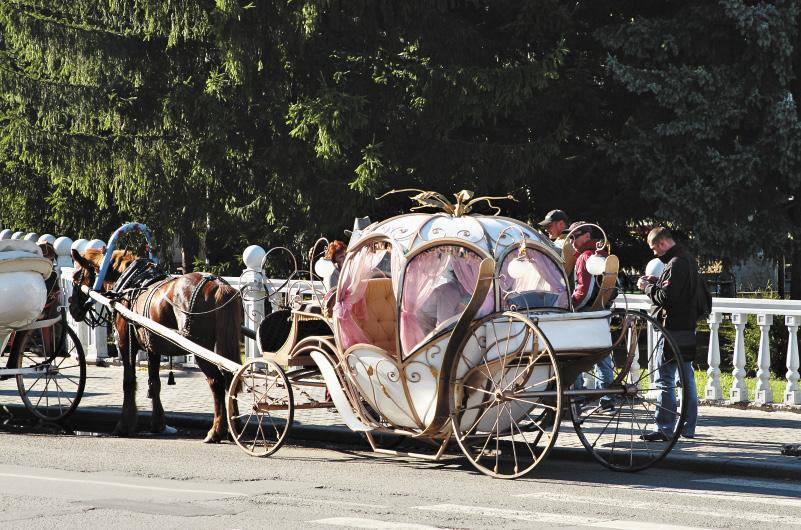 Сюда можно приехать, чтобы подлечиться. А можно – чтобы сыграть красивую свадьбу! Алтайский край