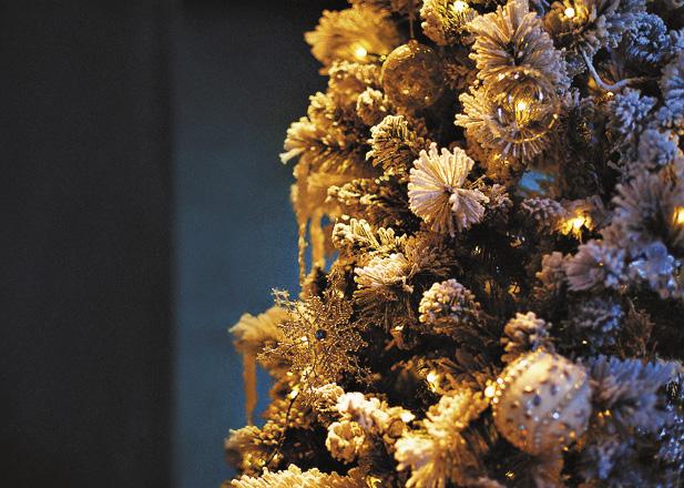 Новый год в Сочи – экзотика для искушенных: романтика вечернего прибоя, свежесть эмоций заснеженной «Красной Поляны». Краснодарский край