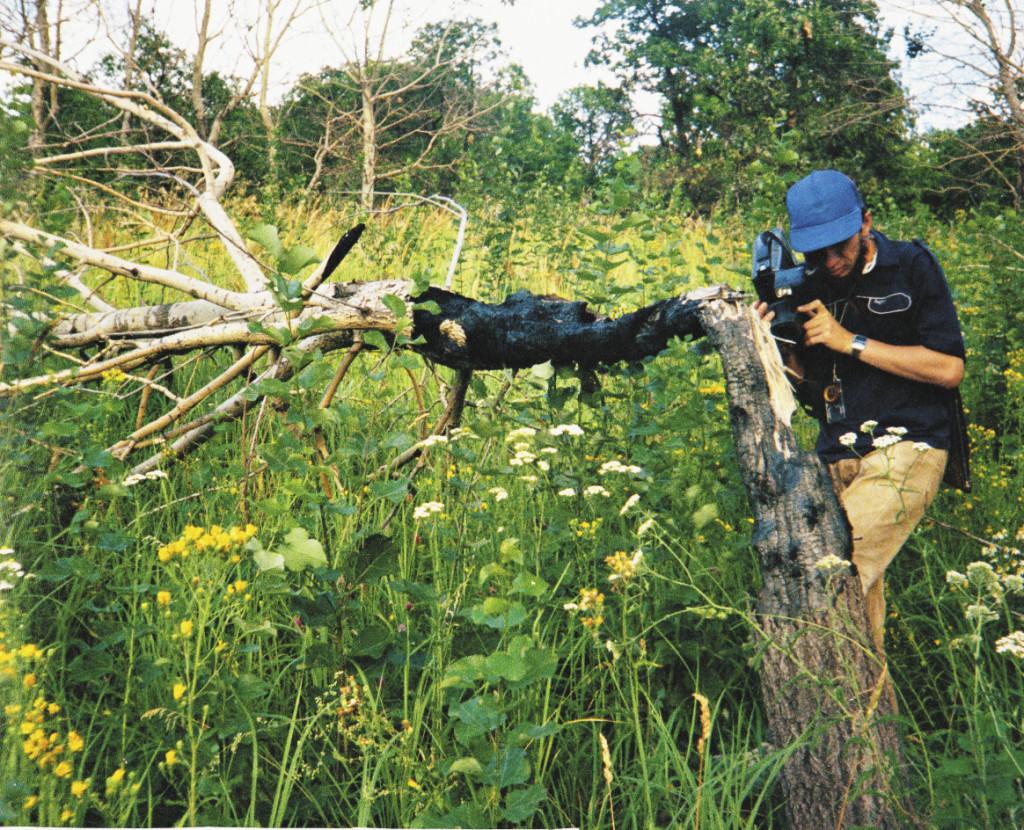 На Медведицкой гряде шаровые молнии встречаются чаще всего в России. Обгоревшее дерево – это след молнии.