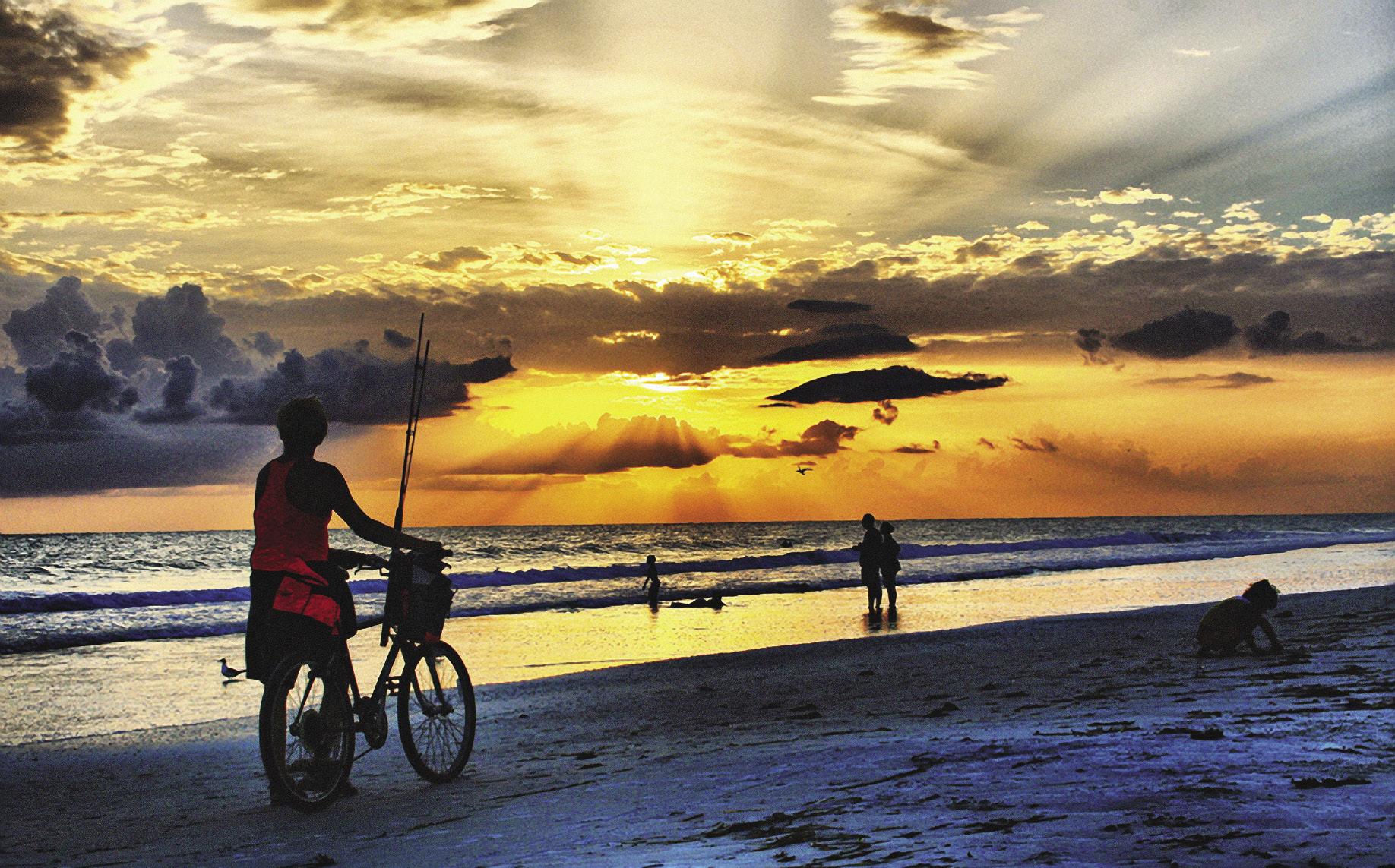 Визитная карточка Куршской косы – широкие, 15–50 м, пляжи с чистейшим мелким песком.