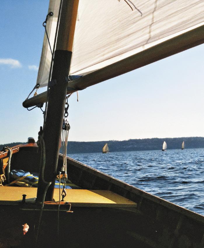 Яхтинг – популярный вид отдыха на большой воде.
