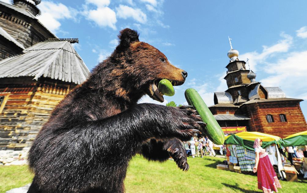 Пляшущий медведь – это не только фантазия голливудских сценаристов.