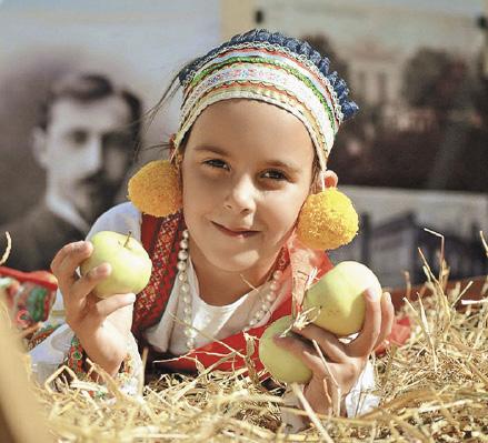 Туристско-рекреационный кластер «Елец», фестиваль «Антоновские яблоки».