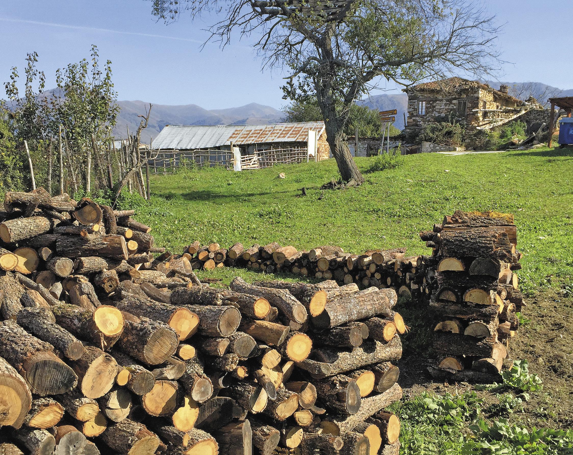 Такая сельская идиллия очень характерна для сел Западной Македонии. Несмотря на то, что зимы здесь теплые, местные жители заготовливают дрова как для домашнего очага, так и на продажу – для каминов ресторанов и отелей.