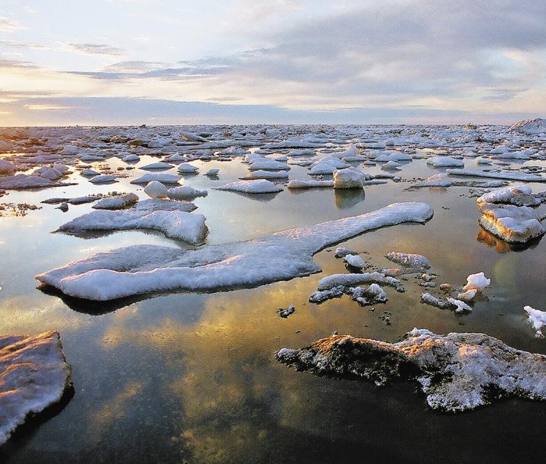 В одном из самых холодных регионов – Чукотке зима длится десять месяцев в году.