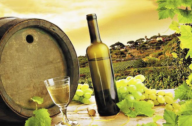 Лечение вином в Анапе: совмещая приятное с полезным.