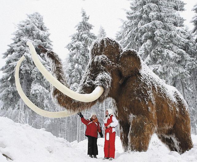 Музей мамонта в Якутске – единственный в мире.
