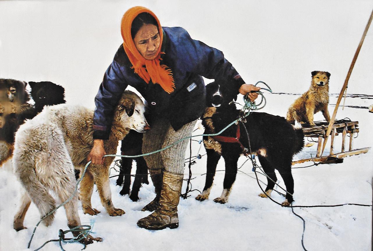Фото двадцатилетней давности: местные жители запрягли собачью упряжку, чтобы привезти обратно на остров с Большой земли Семиликого идола.